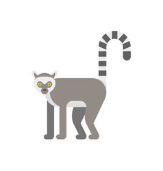 flat style of lemur vector image