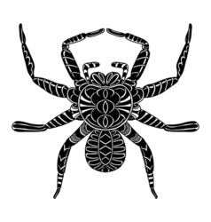 Abstract Spider vector image