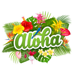 aloha hawaii lettering and tropical plants vector image