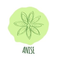 Anise branch vector
