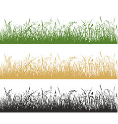 grass and meadow plants silhouette vector image