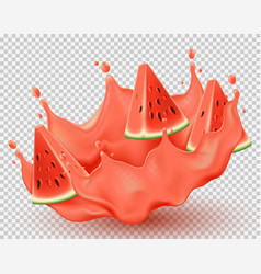 juice splashing effect with watermelon slices vector image