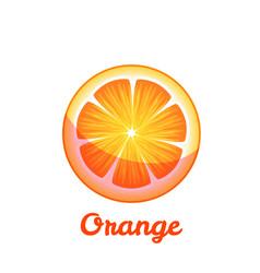 Sweet fruit orange on transparent background vector