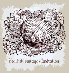 zentangle stylized seashell line art vector image