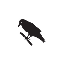 Black silhouette a crow on a branch Royalty Free Vector