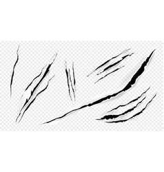 cat marks claws scratches isolated set vector image