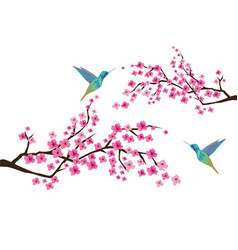 Cherry blossom with hummingbirds vector