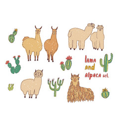 Cute lama alpaca and cactuses set hand drawn vector