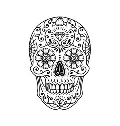 decorative painted mexican sugar skull on white vector image