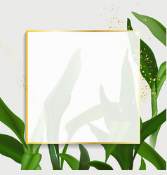 greenery palm leaves and gold frame design vector image