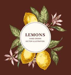 lemon hand drawn circle frame template vector image
