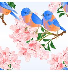 Seamless texture small bird bluebirds thrush vector