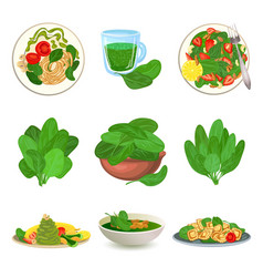 Spinach icons set cartoon style vector