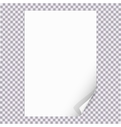 Curled Paper Corner A4 format with Transparent vector
