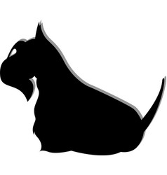 dogs animal a scottish terrier vector image