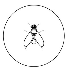 Fly black icon in circle outline vector