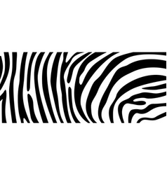 zebra pattern texture repeating simple pattern vector image