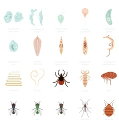 Set of parasites vector image vector image