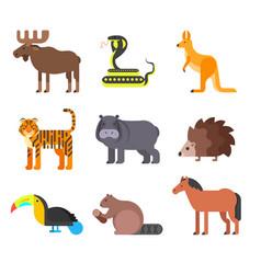 flat style set of animals hedgehog tiger snake vector image