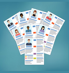 group of resume vector image vector image
