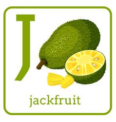 An alphabet with cute fruits letter j jackfruit vector