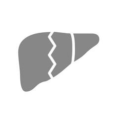 Broken human liver gray icon diseased internal vector