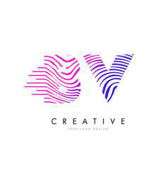 Bv b v zebra lines letter logo design with vector