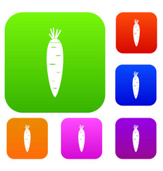 carrot set collection vector image