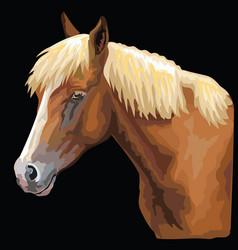 Colorful horse portrait-8 vector