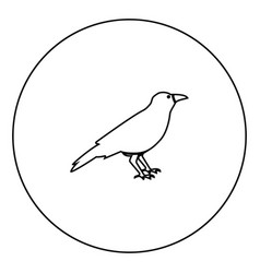 Crow black icon in circle outline vector
