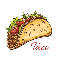 Mexican beef taco with fresh vegetables sketch vector