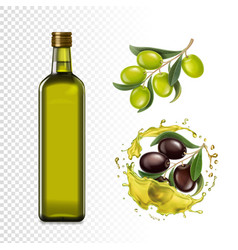 olive oil bottle olives branches and oil splash vector image