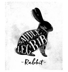 rabbit cutting scheme vector image