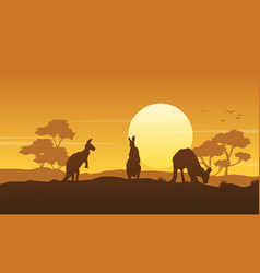 silhouette kangaroo landscape beauty collection vector image