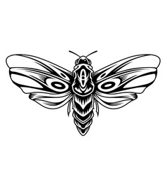 beautiful butterfly vintage concept vector image