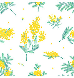 Botanical seamless pattern with yellow mimosa vector