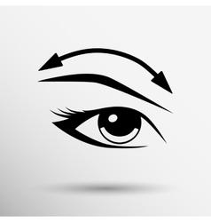 Eyelashes and eyebrows eyelash eye vector image