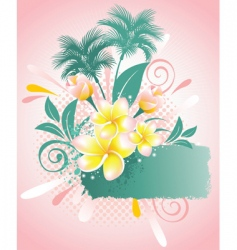 flower Plumeria vector image