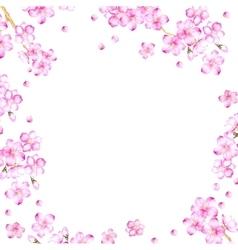 frame cherry blossom flowers vector image