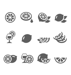 Lemon lime icons set vector image