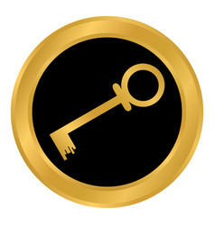 key button on white vector image