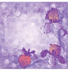 irises vector image