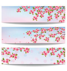 Set of banners with japanese sakura cherry tree vector image vector image