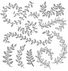 Monochrome vintage set with herbs Sketch of vector
