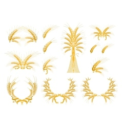 Set of Design Elements with Wheat vector image vector image