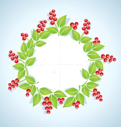 Berry plant vector image vector image