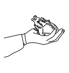 hand holding a human heart outline vector image vector image