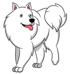 American eskimo cartoon dog vector