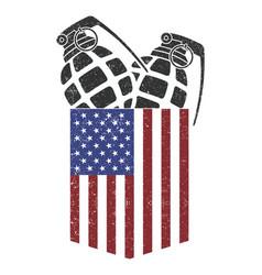 American pocket grenade - granade vector