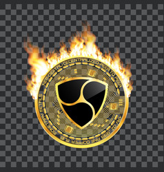 crypto currency nem golden symbol on fire vector image